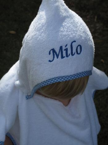 Personalised Hooded Kids Towel